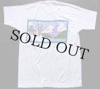 デッドストック★90s USA製 Alpine 染み込みプリント コットン ポケットTシャツ 白 XL★B